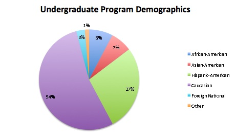 A pie chart showing undergraduate demographics