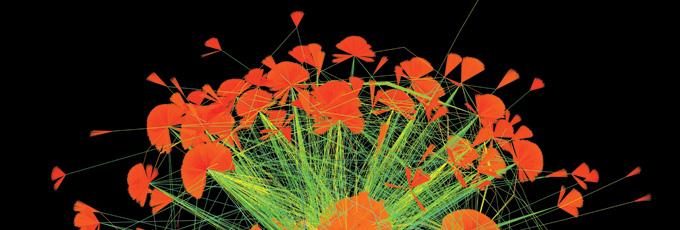 A floral - like arrangement